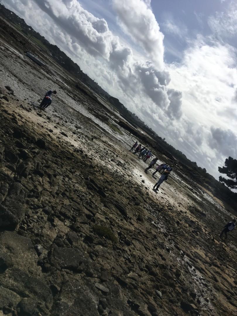 Nettoyons les plages!