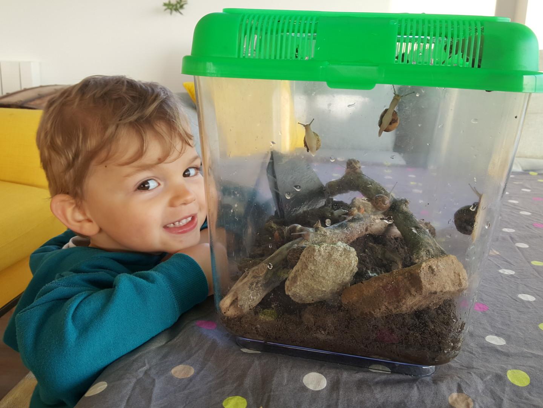 Nos amis les escargots !!